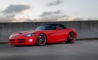 Photo chien voiture Dodge Viper GTS Coupé