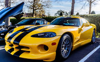 Serpent venimeux Dodge Viper.